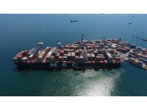 Dev gemi MSC Tina, Marport'a demir attı