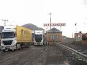 Dilucu'nda 120 TIR'ın C2 belgesi iptal edildi