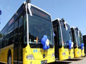 İstanbullulara 350 yeni otobüs daha hizmet edecek