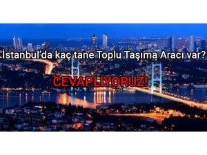 İstanbul Toplu Taşıma Araçları verileri