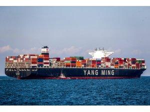 Yang Ming'in Türkiye'den Avrupa'ya Direkt Servisleri Arttıyor