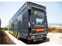 OKT Trailer hayvancılıkla uğraşanların tercihi oldu