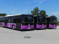 İstanbul Anadolu Yakasına 149 otobüs