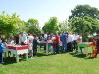 Alışan Lojistik çalışanları piknikte buluştu