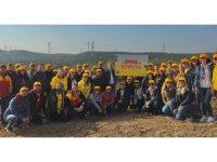 DHL İstanbul'da 2.500 ağaçlık bir koru oluşturuyor